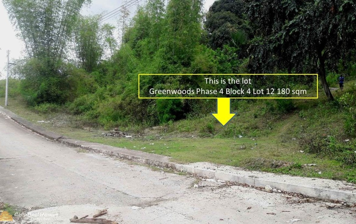 Lot for Sale Cebu City