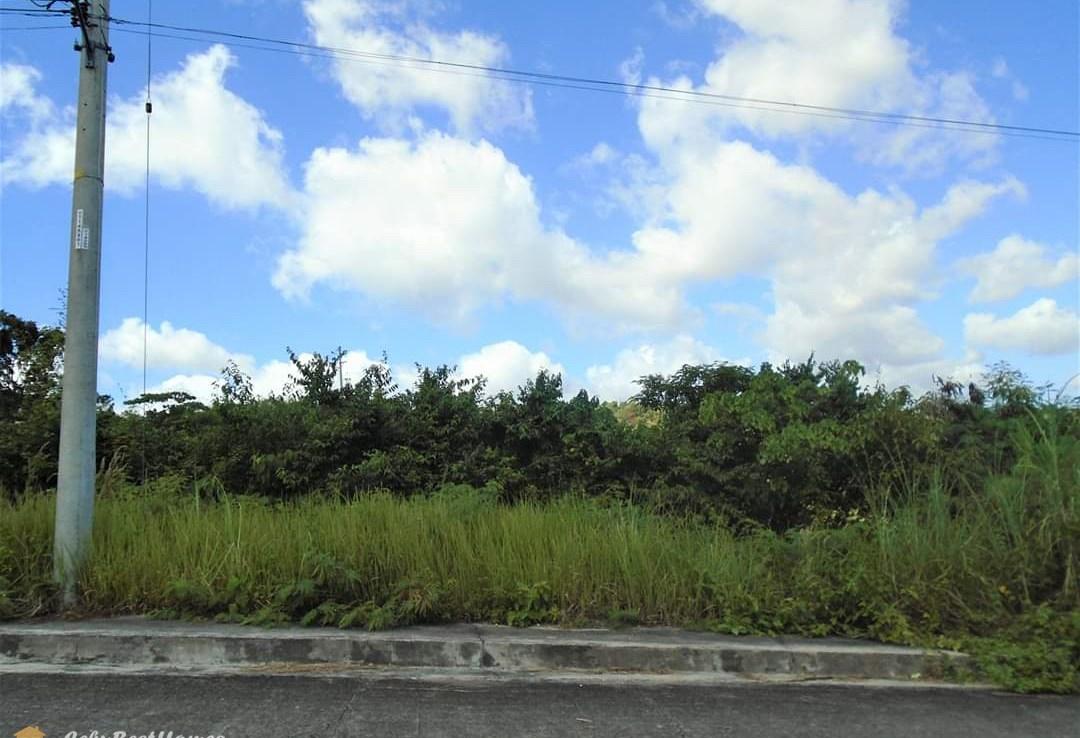 talisay cebu lot for sale