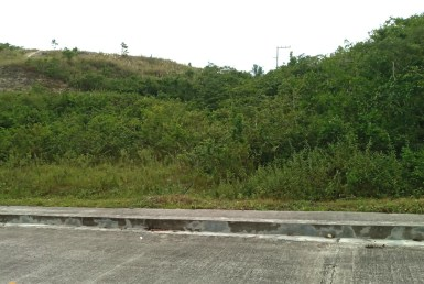 Lot for Sale in Consolacion Cebu