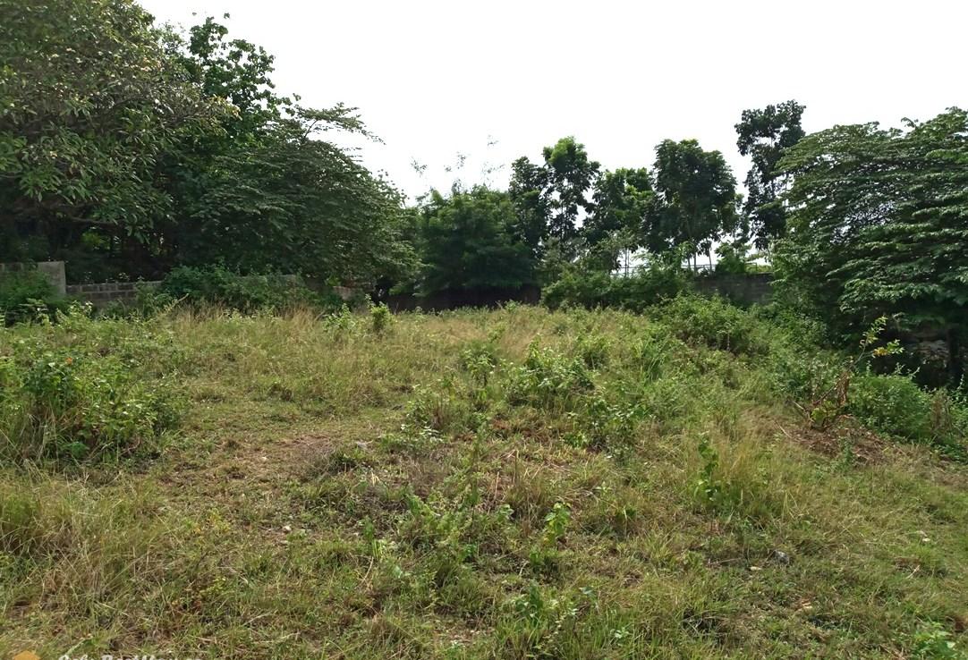 Subdivision Lot for Sale in Consolacion Cebu