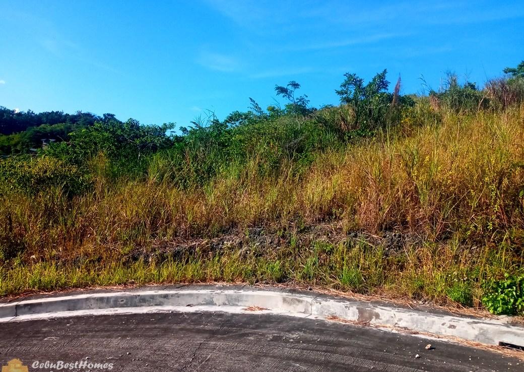 Cebu Consolacion Lot for Sale