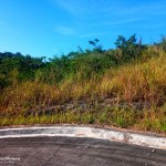 Cebu Consolacion Lot for Sale