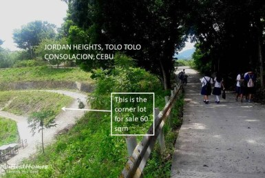 Lot for Cheapest Lot for Sale in Consolacion Cebu