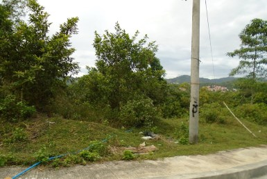 Big Lot for Sale in Cebu City