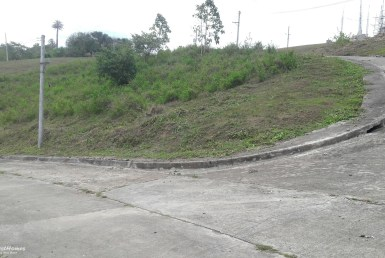 CORNER LOT FOR SALE IN CEBU CITY
