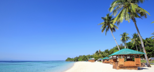 The best beaches you need to check out when you're in Cebu | Cebu Finest
