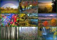 Collage fotos naturaleza
