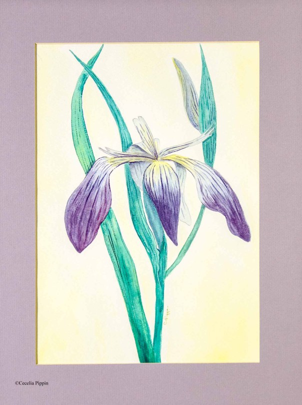 Cecelia Dotson Pippin Art (16)