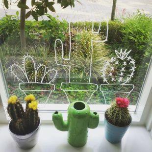 raamtekening cactussen, raamtekening cactus