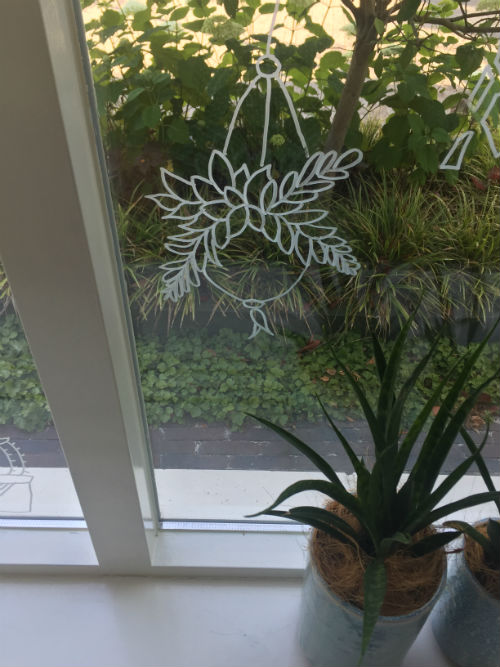 raamtekening cactussen, raamtekening cactus, raamtekening vetplanten, raamtekening planten