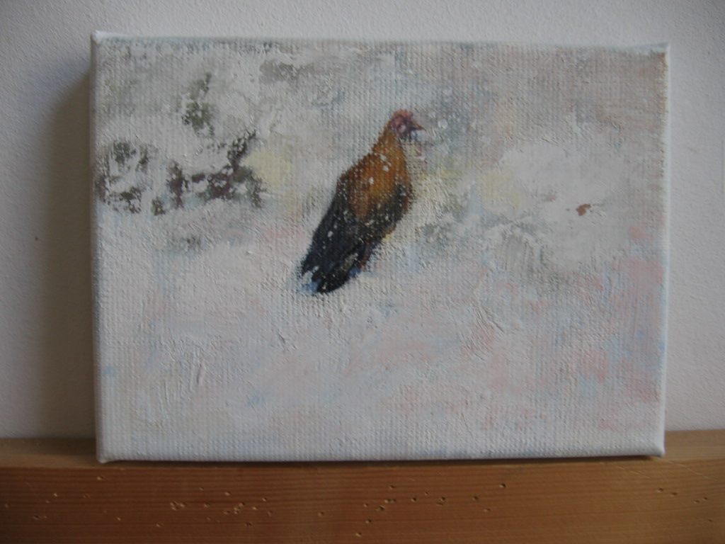 Kip alleen in sneeuw - Lone chicken in snow