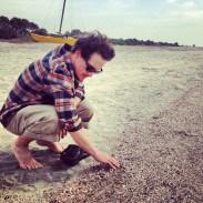 picking shells