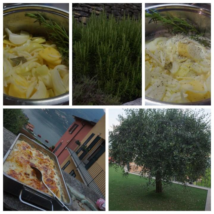 potatisgratäng collage.jpg