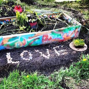 Greenhouse gardening day8
