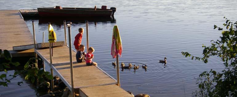 Enjoy camping at Cedar Grove.
