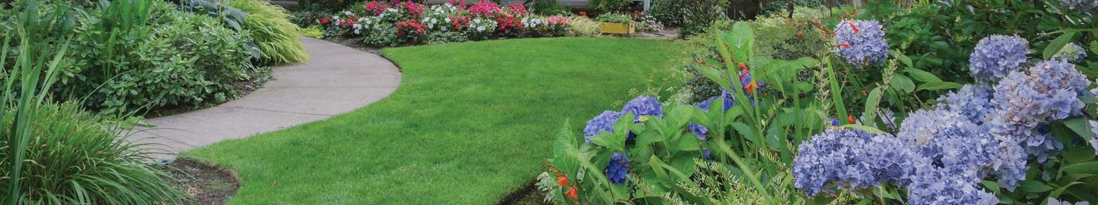 Cedar Hill Property Maintenance Landscape Services