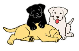 FEB 18 3 DOGS