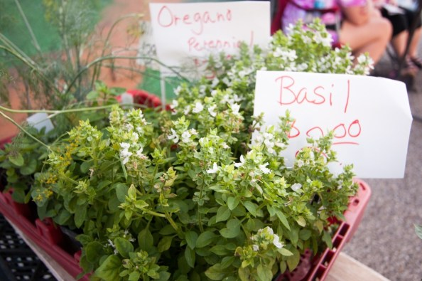 Vendors at Cedarville's Farm and Art Market sell fresh herbs and produce. (Photo: Jillian Philyaw)