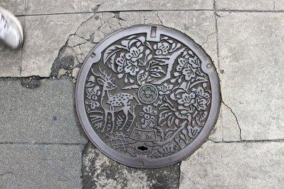 Nara, city of deer.