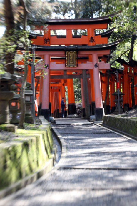 Start of the hike through the torii paths