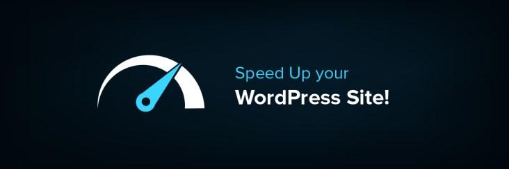 optimize wordpress site speed