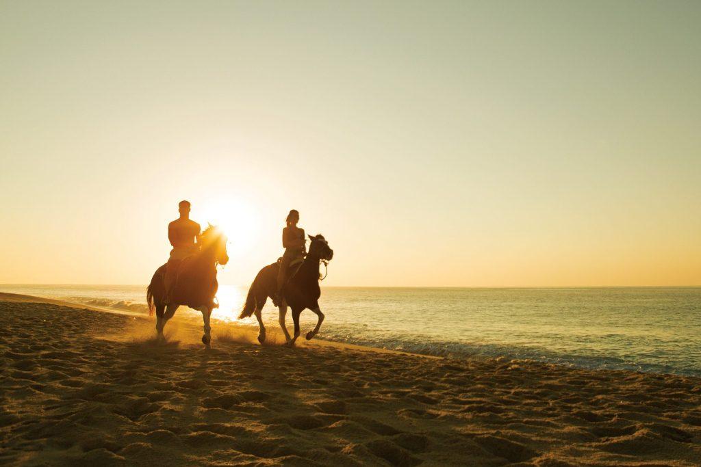DRELC_EXT_Horsebackriding_Beach1_1