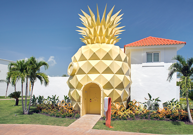 Nick-800px-PUJ-8-Pineapple_NHPC_