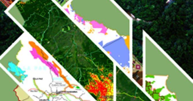 Colección de mapas de Tierra y Territorio y Recursos Natuarles de Bolivia