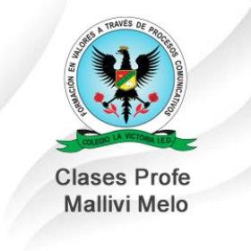Clases Profe. Mallivi Melo