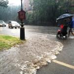 street runoff