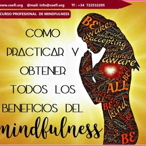 Curso-profesional-de-Mindfulness-CEEFI-INTERNATIONAL-BUSINESS-SCHOOL