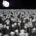 ONLINE FIRST – FORUM: Peter Sloterdijk's 'Pseudonymous Politics'
