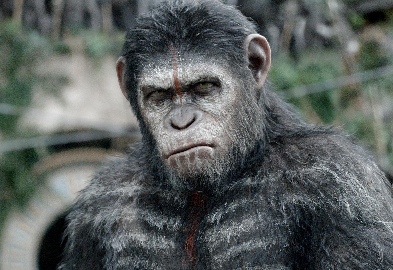 Planeta maimuțelor: Revoluția