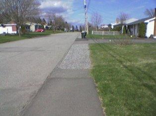 Compost Cart on Sidewalk