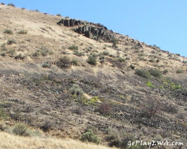 Photos: Wenas Wildlife Area Exploring Run 4