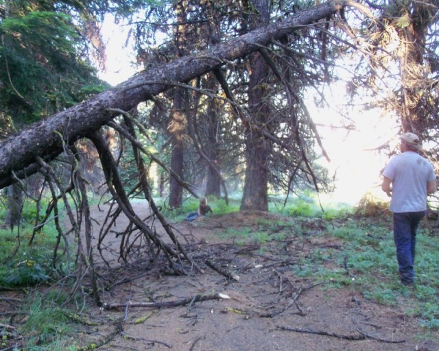 Photos: EWOR Ahtanum ORV Trail Maintenance Camp-out 46