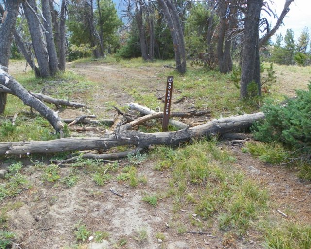 Photos: Trail 4W613 Work Day 9