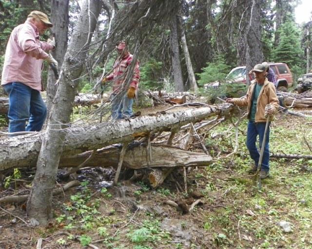 Photos: Trail 4W613 Work Day 41