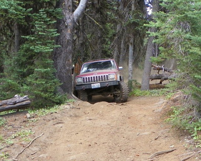 Photos: Trail 4W613 Work Day 49