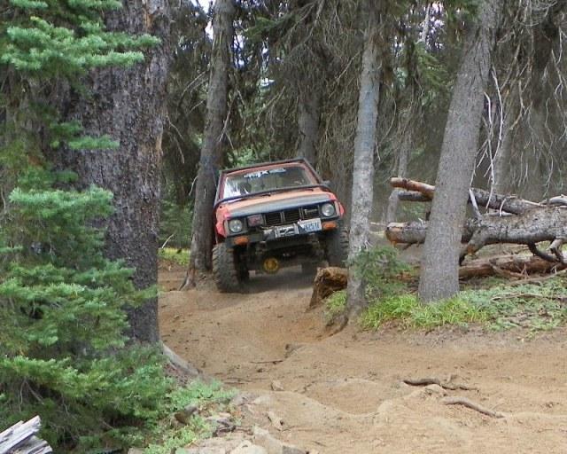 Photos: Trail 4W613 Work Day 52