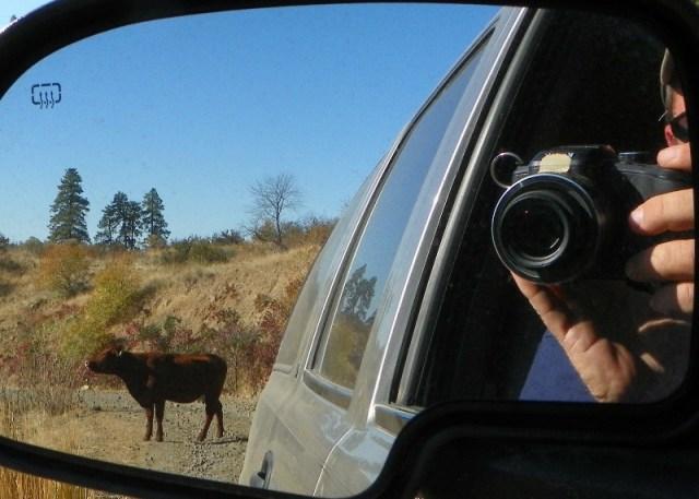 Photos: Pacific Northwest Backroad Adventures North Colockum Tour 28
