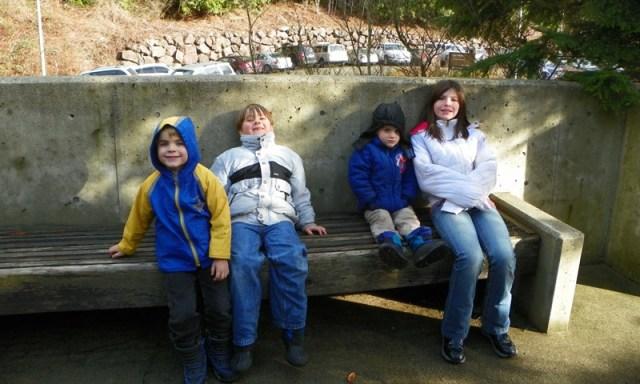 Snoqualmie Falls 19