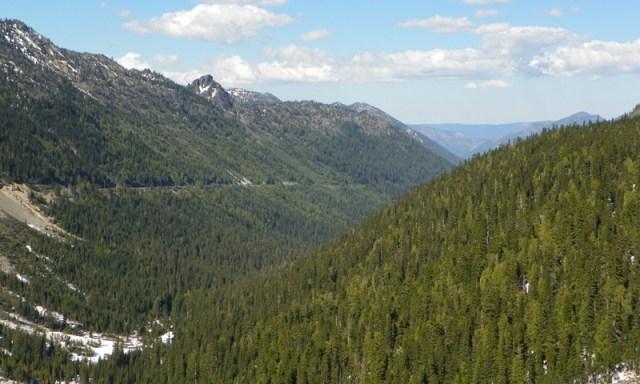Mt. Rainier Drive 8