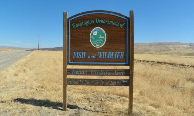 Wenas Wildlife Area Dirt bike/Quad Run – Sept 5 2011 1