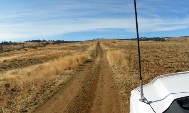 Cleman Mountain Halloween Backroads Run – Oct 29 2011 12