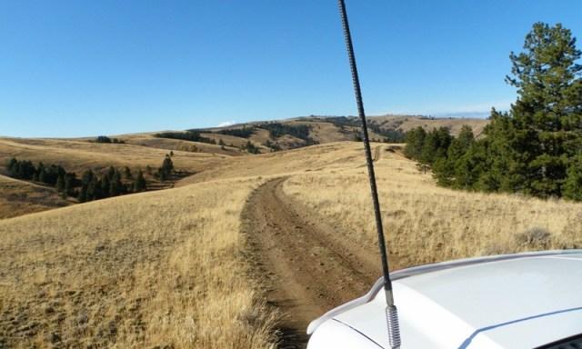 Cleman Mountain Halloween Backroads Run – Oct 29 2011 30