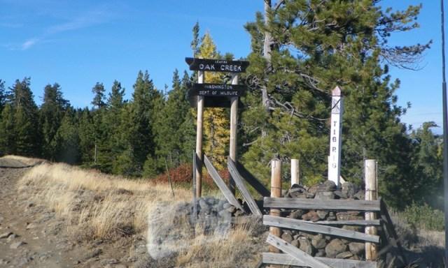 Cleman Mountain Halloween Backroads Run – Oct 29 2011 51