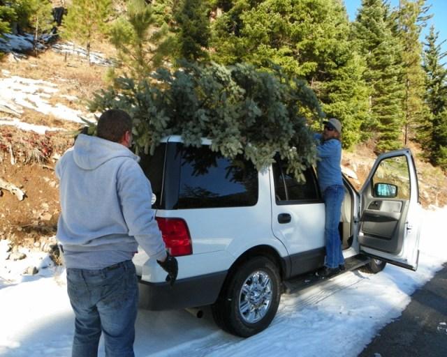 Rimrock Christmas Tree Backroads Run 17