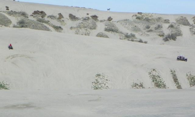 2012 Spring ORV Run at Juniper Dunes 23