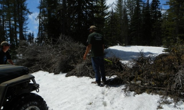 Memorial Day 4×4 Snow Run at the Ahtanum State Forest 34